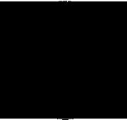 logo-nkp