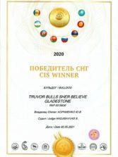 cis winner